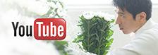 youtube ユー花園チャンネル公開中