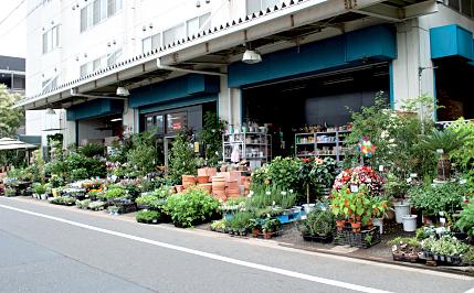 ユー花園 桜新町店