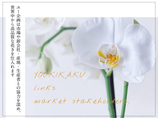 ユー企画は市場や卸会社・産地・生産者との協力を深め、世界中から高品質な花きを仕入れる有限会社ユー企画TOP画像