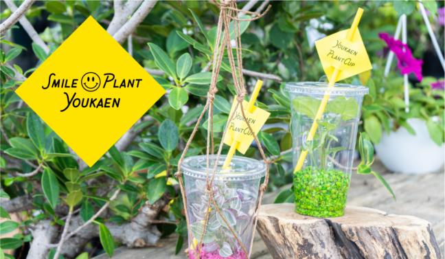 ミニ観葉植物を使った、2021Smile Summer Workshop イメージ
